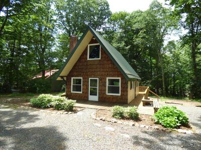 Carroll County Single Family Home For Sale: 658 Old Appalachian Trail