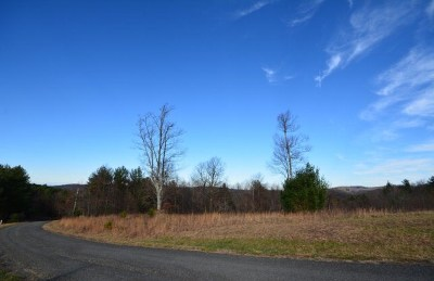 Carroll County, Grayson County Residential Lots & Land For Sale: 150 Fox Squirrel