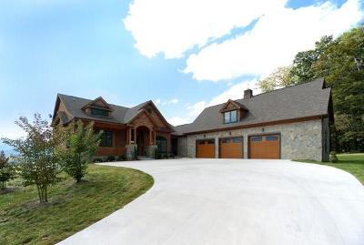 Chilhowie Single Family Home For Sale: 15277 Bishop Road