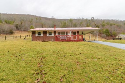 Chilhowie Single Family Home For Sale: 1049 Horseshoe Bend Road