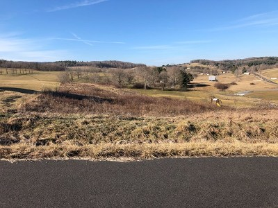 Bland Residential Lots & Land For Sale: Tbd Big Bend Dr.