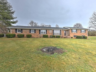 Abingdon Single Family Home For Sale: 19400 Lee Highway