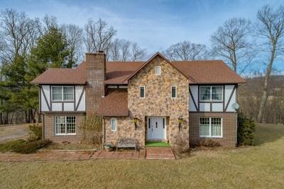 Wythe County Single Family Home For Sale: 5724 Grayson Turnpike