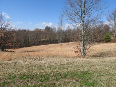 Carroll County, Grayson County Residential Lots & Land For Sale: Lot 21 Lot 21 Knob Hill Ln