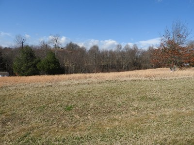 Carroll County, Grayson County Residential Lots & Land For Sale: Lot 6 Lot 6 Knob Hill Ln