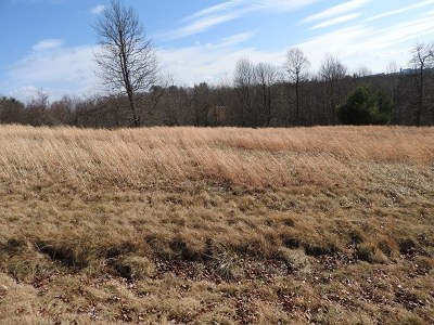 Carroll County, Grayson County Residential Lots & Land For Sale: Lot 15 Lot 15 Knob Hill Ln