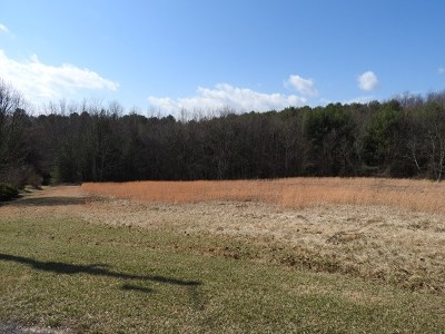 Carroll County, Grayson County Residential Lots & Land For Sale: Lot 20 Lot 20 Knob Hill Ln