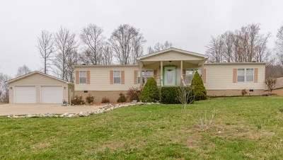 Meadowview Manufactured Home For Sale: 30207 Old Saltworks Rd