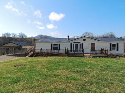 Max Meadows Single Family Home For Sale: 453 Brown Town Rd.