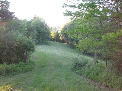 Hillsville Residential Lots & Land For Sale: Tbd Sylvatus Hwy