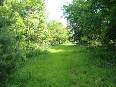 Wytheville Residential Lots & Land For Sale: Tbd Crocketts Cove