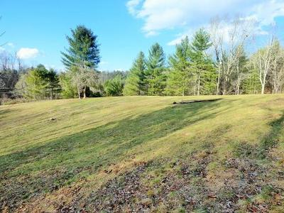 Wytheville Residential Lots & Land Active Contingency: Tbd Greasy Creek Rd