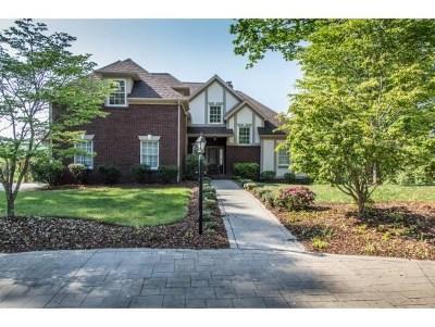 Bristol Single Family Home For Sale: 15127 Stonewall Ridge