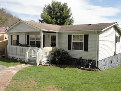 Saltville Manufactured Home For Sale: 267 &255 Cove Street