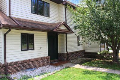 Wytheville Condo/Townhouse For Sale: 285 Washington St
