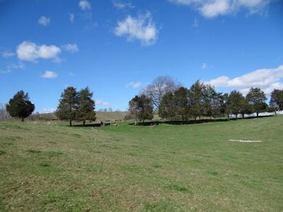 Meadowview Residential Lots & Land For Sale: 26452 Northridge Road