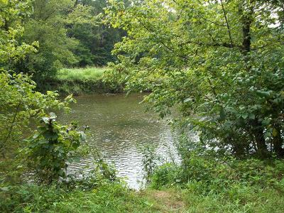 Abingdon Residential Lots & Land For Sale: Tbd Roebuck Road Lot 19a