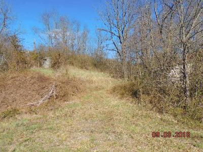 Max Meadows Residential Lots & Land For Sale: 4894 Peppers Ferry Rd.