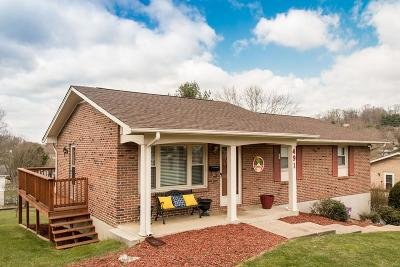 Bristol Single Family Home For Sale: 491 Bellehaven Drive
