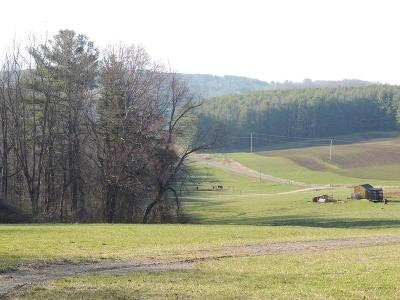 Galax VA Residential Lots & Land For Sale: $21,500