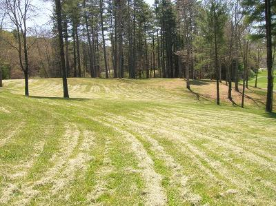 Carroll County, Grayson County Residential Lots & Land For Sale: Tbd Manor House Dr