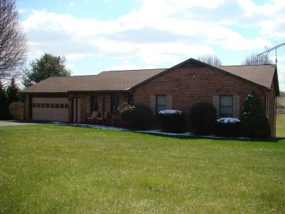 Wythe County Single Family Home For Sale: 169 Fabric Lane