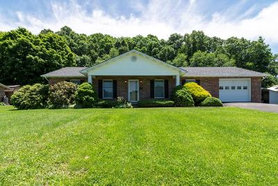 Meadowview Single Family Home For Sale: 28242 Lee Highway