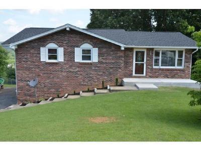 Bristol VA Single Family Home For Sale: $125,500