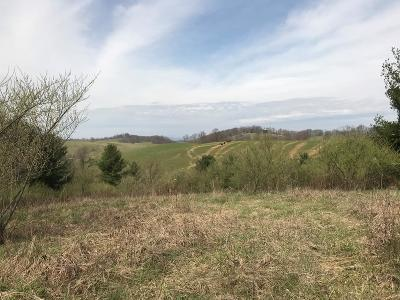 Chilhowie Residential Lots & Land For Sale: Tbd Shuler Hollow Road