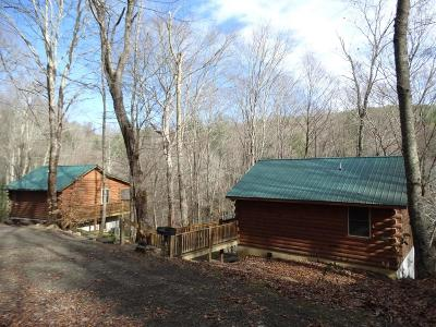 Hillsville Single Family Home Active Contingency: 313/317 Little Reed Acres