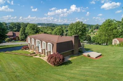 Bristol VA Single Family Home For Sale: $289,900