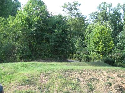 Carroll County, Grayson County Residential Lots & Land For Sale: Tbd Little Waterfalls Trail