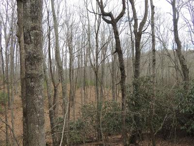 Residential Lots & Land For Sale: Tbd Chestnut Grove Road