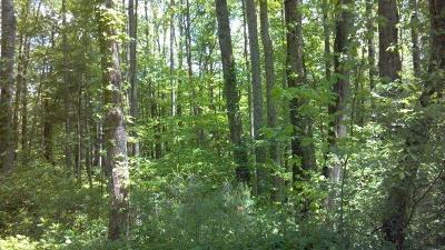 Galax, Woodlawn, Hillsville, Fries Residential Lots & Land For Sale: Tbd Hickory Nut Hollar