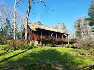 Carroll County Single Family Home For Sale: 132 Hollow Tree Rd