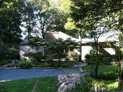 Hillsville Single Family Home For Sale: 50 Antler Point