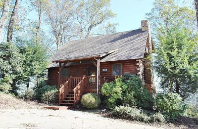 Carroll County, Grayson County Single Family Home For Sale: 919 Cascade Trail