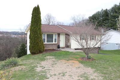 Bristol VA Single Family Home For Sale: $122,900