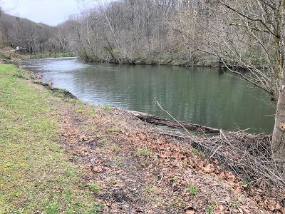 Saltville Residential Lots & Land For Sale: 30067 North Fork River Rd