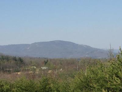 Carroll County Residential Lots & Land For Sale: Tbd Old Pipers Gap Rd