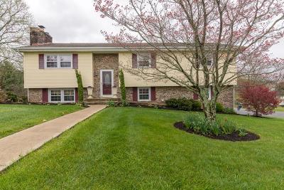 Abingdon VA Single Family Home For Sale: $218,000