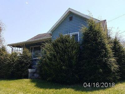 Wythe County Single Family Home For Sale: 1833 Austinville Road