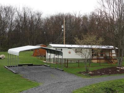 Marion Manufactured Home For Sale: 251 Dryden Lane