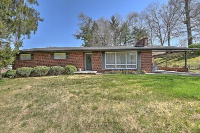 Abingdon VA Single Family Home For Sale: $150,000