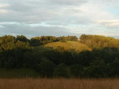 Carroll County, Grayson County Residential Lots & Land For Sale: Tbd Deer Trail