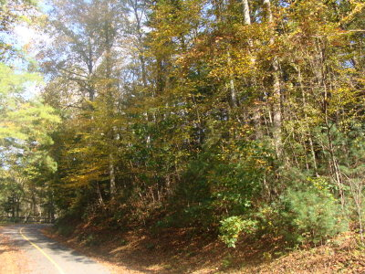 Carroll County, Grayson County Residential Lots & Land For Sale: Tbd Otter Creek Trail