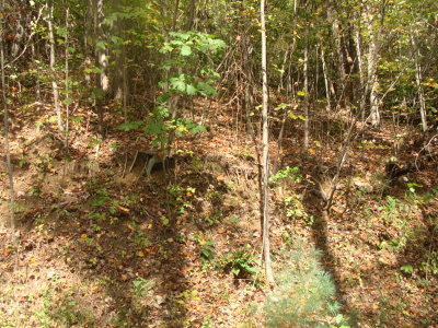 Carroll County Residential Lots & Land For Sale: Tbd Old Wagon Trail