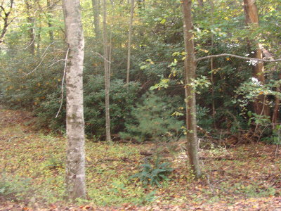 Carroll County Residential Lots & Land For Sale: Tbd Beaver Trail