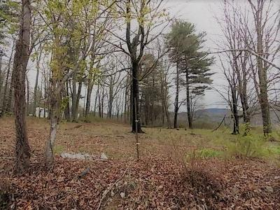 Speedwell Residential Lots & Land For Sale: Tbd Dry Road