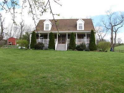 Wythe County Single Family Home For Sale: 908 Cedar Springs Rd